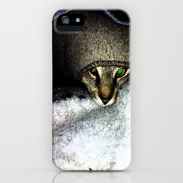 Peek-a-boo iPhone Case