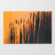 DRIPS Canvas Print