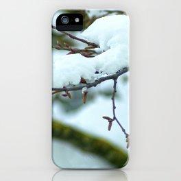 In genere nix iPhone Case