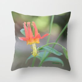 Pastel Columbine Afternoon Throw Pillow