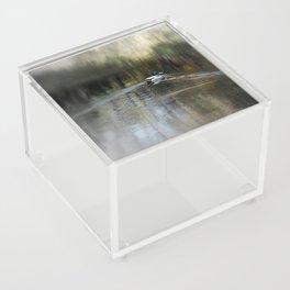 Mallard Acrylic Box