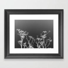 Night Sky in Reverse Framed Art Print