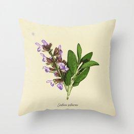 Vintage botanical print - Clary Sage Throw Pillow