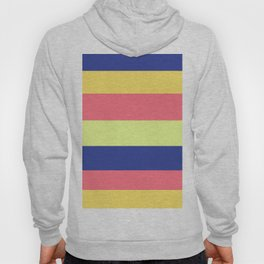 Modern rainbow neon colors color block stripes Hoody