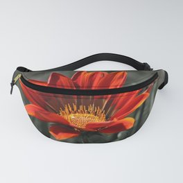 Red Gazania Flower Fanny Pack