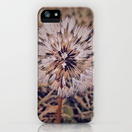 Dew On Dandelion iPhone Case