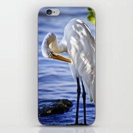 Great Egret Grooming iPhone Skin