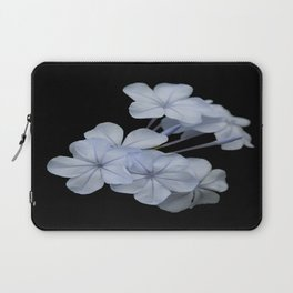 Pale Blue Plumbago Isolated on Black Background Laptop Sleeve
