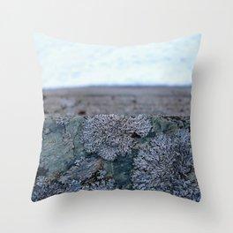 Glacier Museum, Fjærland Throw Pillow