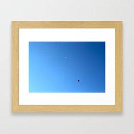 Bird Plane TWO Framed Art Print