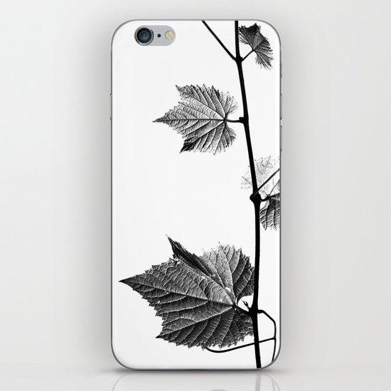 wine leaf abstract III iPhone & iPod Skin