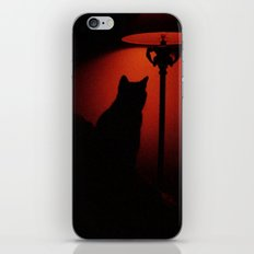 this cat iPhone & iPod Skin