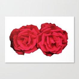 Fine Pair of Roses Canvas Print