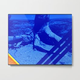 A Slice of Nature Bryce Canyon Metal Print