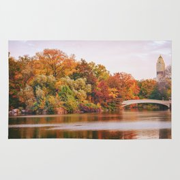 Autumn Colors Are the Best Colors - New York City Rug