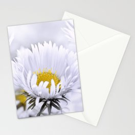 Flowers white macro 072 Stationery Cards