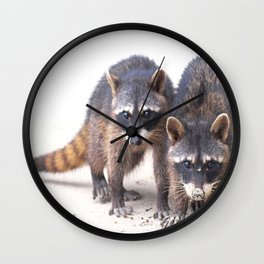 Cute wild Racoons in Costa Rica Wall Clock