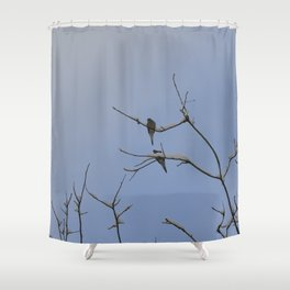 Winter Dove Shower Curtain
