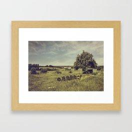 Drogomil Framed Art Print