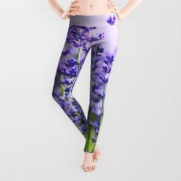 Lavender 15 Leggings