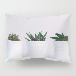 Minimalist White Potted Succulents Pillow Sham