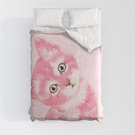 Baby Cat in Pink Comforters