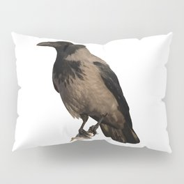 Hooded Crow Isolated Pillow Sham