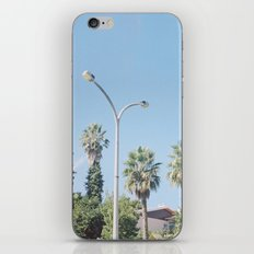 A Family of Trees iPhone Skin
