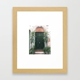 Doors of Rome, Green cactus Framed Art Print
