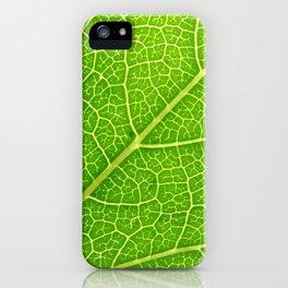 Green Leaf Veins 04 iPhone Case