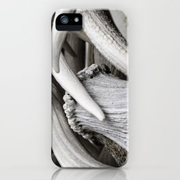 The Antler Arches of Jackson Hole iPhone Case