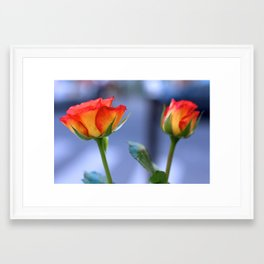 """""""Love planted a rose and the world turned sweet"""" Framed Art Print"""