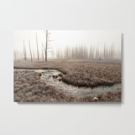 Yellowstone National Park- Foggy morning at Tangled Creek Metal Print
