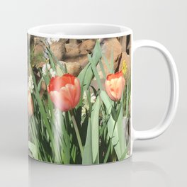 Garden tour Coffee Mug