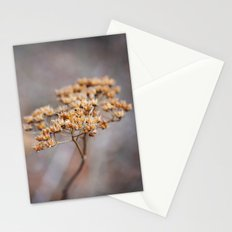 Dried Up Stationery Cards