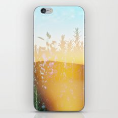 From 3pm to the Sunset iPhone & iPod Skin