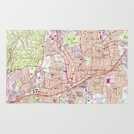 Stamford Connecticut Map (1987) Rug