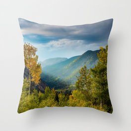 Sunlight Valley // Dense Forest View through the Autumn Colors in Colorado Throw Pillow
