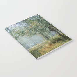 Deep Within the Forest Trees Notebook