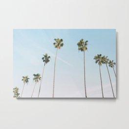 Beach Palms Metal Print