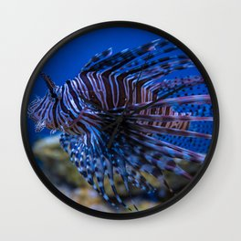 Pterois Miles (The Devil Fish) Wall Clock