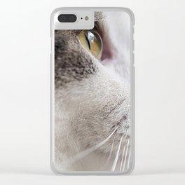 Misha Cat Clear iPhone Case