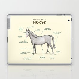 Anatomy of a Horse Laptop & iPad Skin