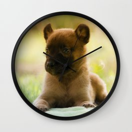 Malinois puppies in the soap blowing game Wall Clock