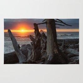 Rialto Beach Sunset Rug