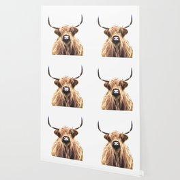 Highland Cow Portrait Wallpaper