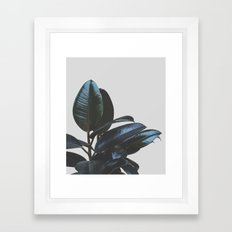 Botanical Art V4 #society6 #decor #lifestyle Framed Art Print