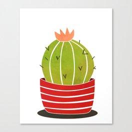A cactus in a pot Canvas Print