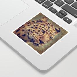 Leopard portrait Sticker