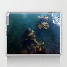 Selkies Laptop & iPad Skin